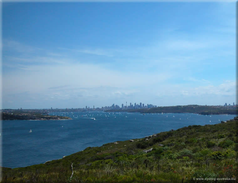 Sydney Harbour with the City Center (CBD) in the Background