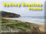 Our Beaches, City and Surrounds