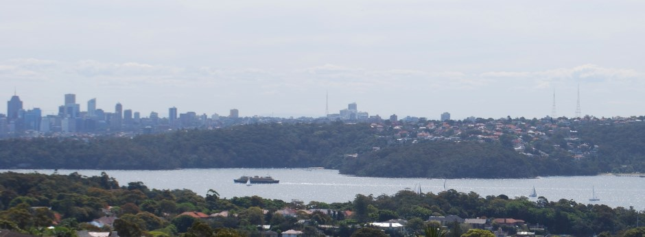 Manly Ferry on its way back to the City, View from South Head