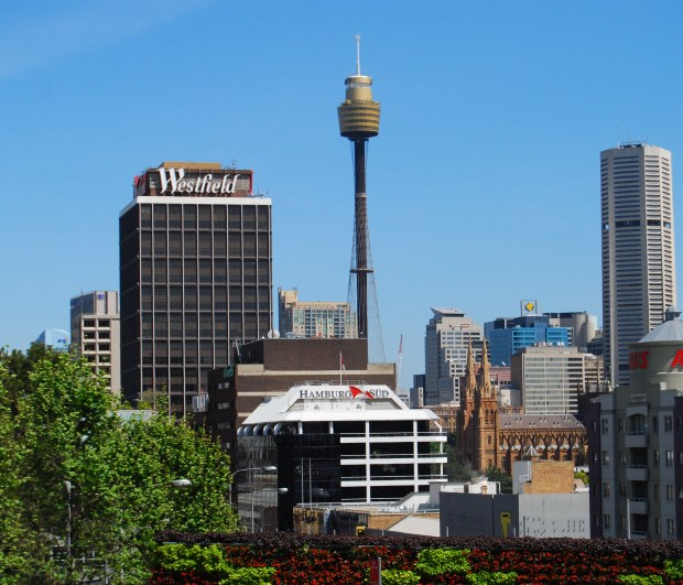 Sydney Tower above the City