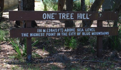 One Tree Hill, Mount Victoria