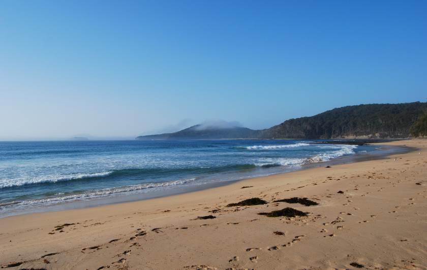 Summer Morning at Pebbly Beach, Murramarang National Park