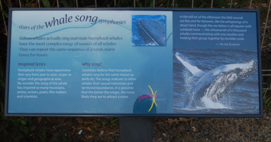 This sign at Warden Head, Shoalhaven, tells about the songs of Whales seen here during their Season