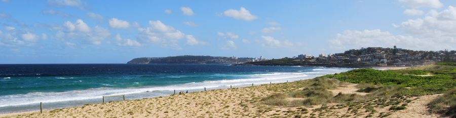 Curl Curl Beach, backed by dunes and views all the way to North Head (Manly)