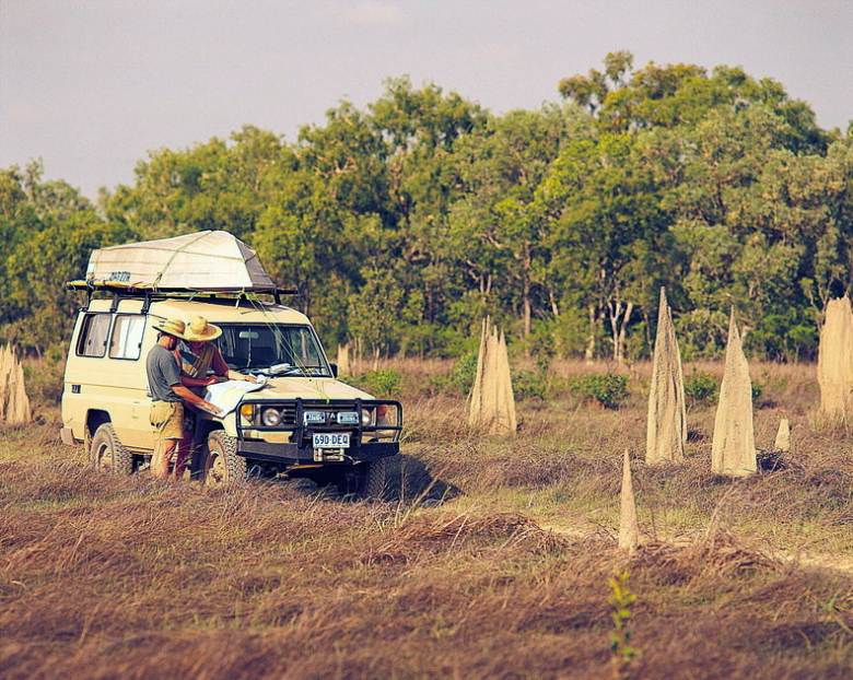 Termite mounds - Exploring central Australia.