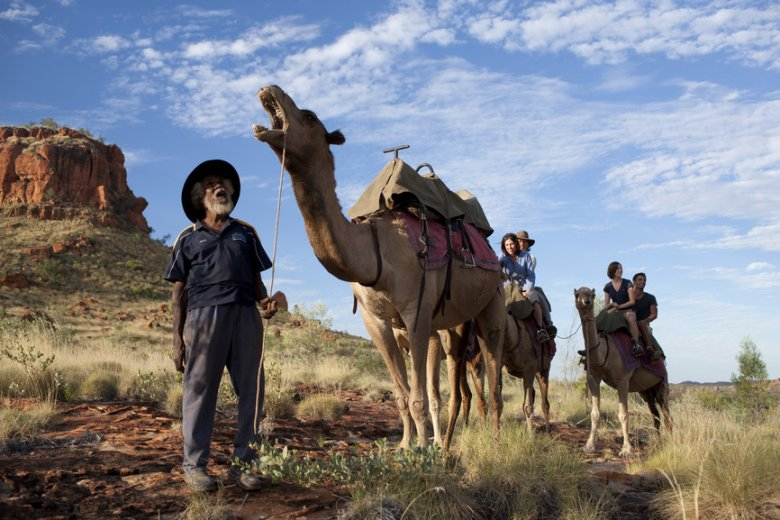 Harry Watson's Camel Adventures - One of the many desert Australia Indigenous Experiences.