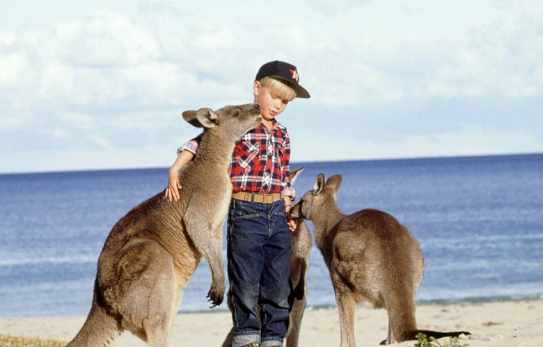 Getting up close with Kangaroos.