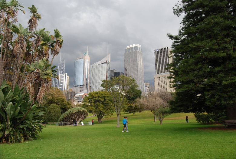 The green Sydney Royal Botanic Gardens with the City in the background