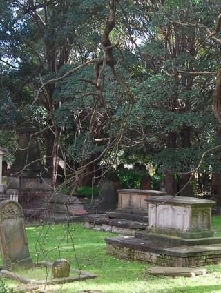 Historic Camperdown Cemetery