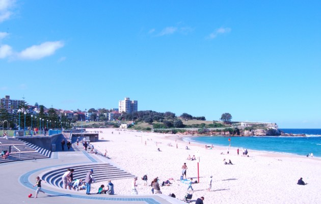 Sydney Beaches Aussie Day Out
