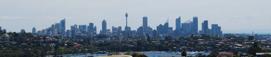 Views of the City from South Head