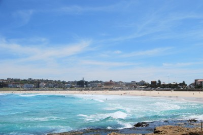 The Bondi Beach coastal walk has spectacular ocean views