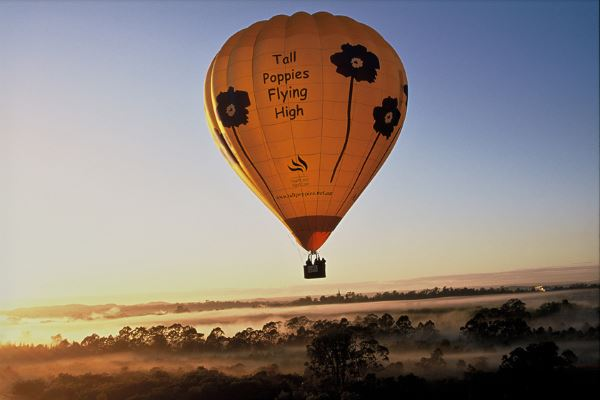 Take a Balloon Ride early at Dawn for fantastic views