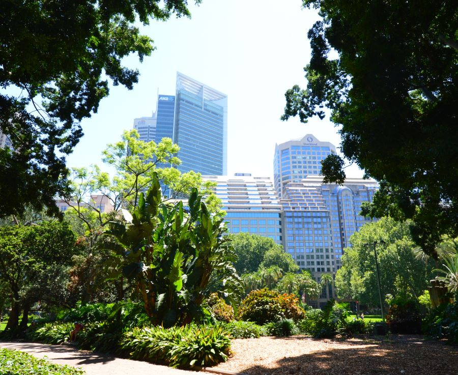Hyde Park, east of the Sydney City Business District (City Centre)