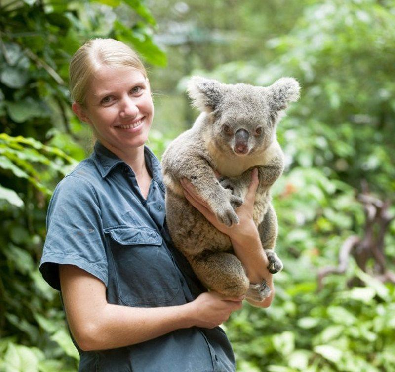 Koalas found in Australia of course.