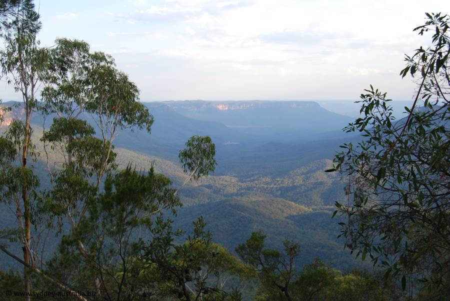 Valleys of the Blue Mountains - or at least one of them - Megalong Valley.