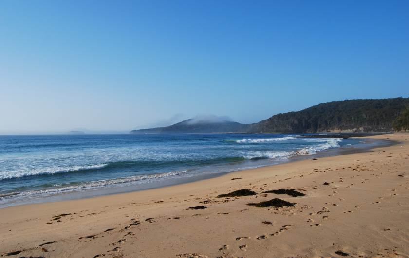 Summer Morning at Pebbly Beach, Murramarang National Park