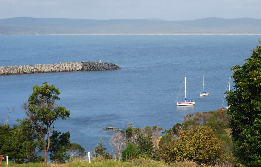 Activities: Take a Whale and Dolphin Cruise from the Deep Water Port of Eden, Sapphire Coast NSW.