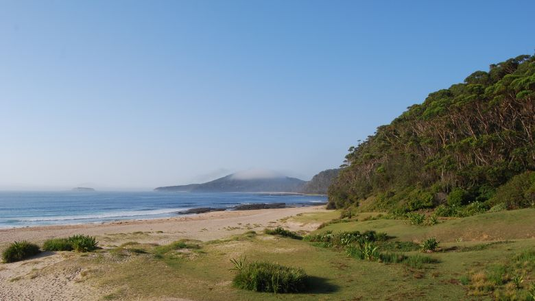 Pebbly Beach at Murramarang - One of the many stunning beaches found on the South Coast.
