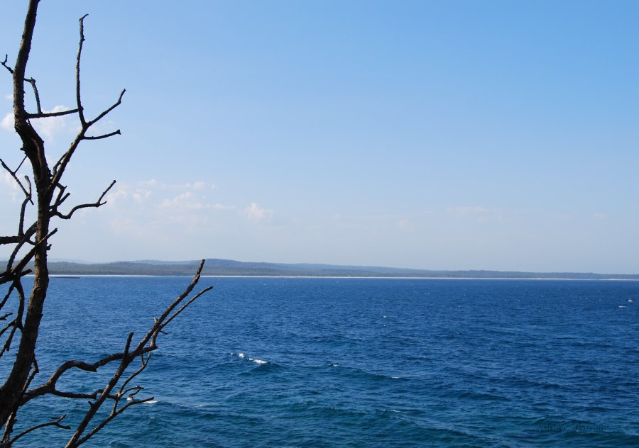 Long sandy beaches, vast green forests and the blue waters of Shoalhaven