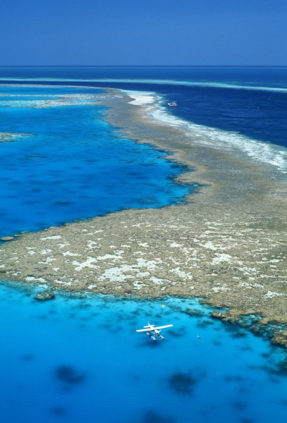 Cruise the islands or take an adventure flight to explore the Barrier Reef.