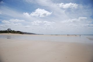 Surf Coast of Victoria - Anglesea Beach