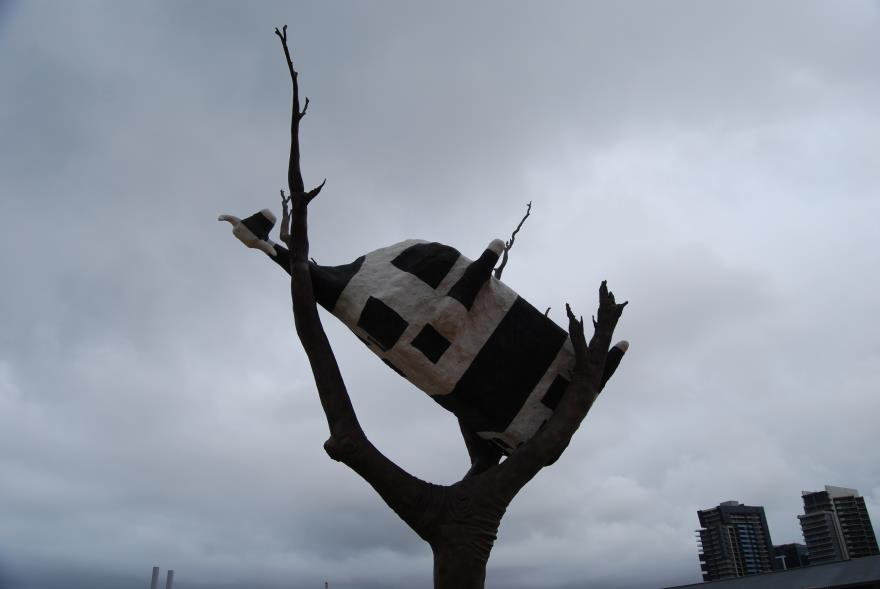 The Cow stuck in a Tree - Another Climate Change Victim?